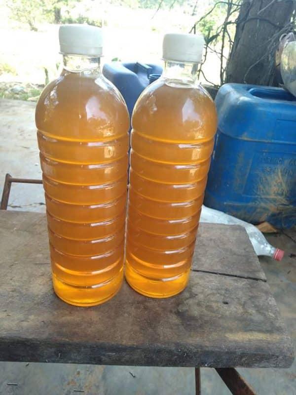 mật ong hoa cà phê daklak (5)